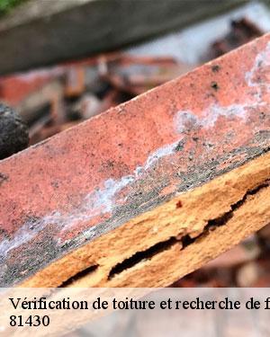Recherche fuite de toiture à Le Fraysse 81430 Tél :05.33.06.14.90